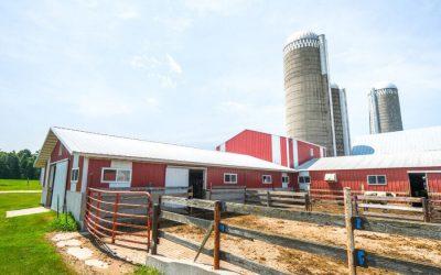 Capannoni prefabbricati in agricoltura: l'acciaio è la soluzione ideale